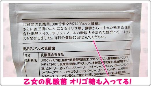 乙女の乳酸菌 口コミ パッケージ 配合成分