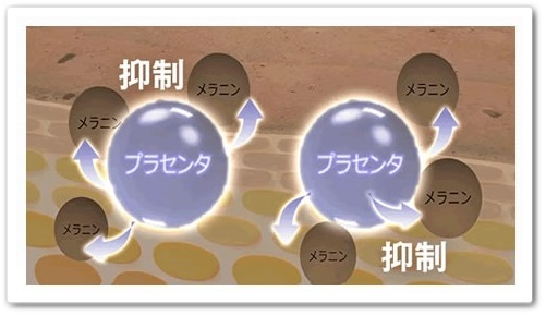 メビウス製薬 ホワイトニングリフトケアゲル 口コミ シミ 美白 オールインワンゲル シミケア成分