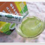 大正 脂肪茶 1000円 初回限定 お試し 中性脂肪 お茶 大正製薬 血中中性脂肪が高めの方の緑茶 口コミ 効果 飲み方 粉