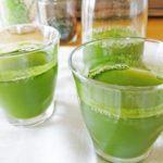 世田谷食品 乳酸菌青汁