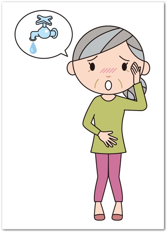 ニョーイレス 口コミ 効果 日本薬師堂 頻尿 ひんにょう トイレが近い 残尿感 サプリメント 最安値 通販 にょーいれす 頻尿
