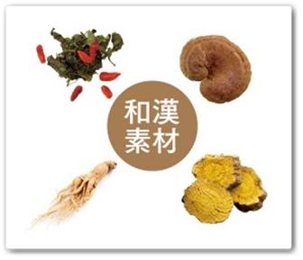 美巡食 口コミ 40代 痩せる 薬日本堂 びぜんしょく 和漢 漢方 置き換えダイエット 和漢