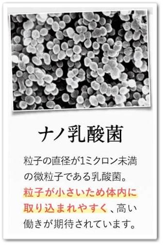 bisera ビセラ 口コミ 効果 乳酸菌サプリ 腸内フローラ ナノ乳酸菌
