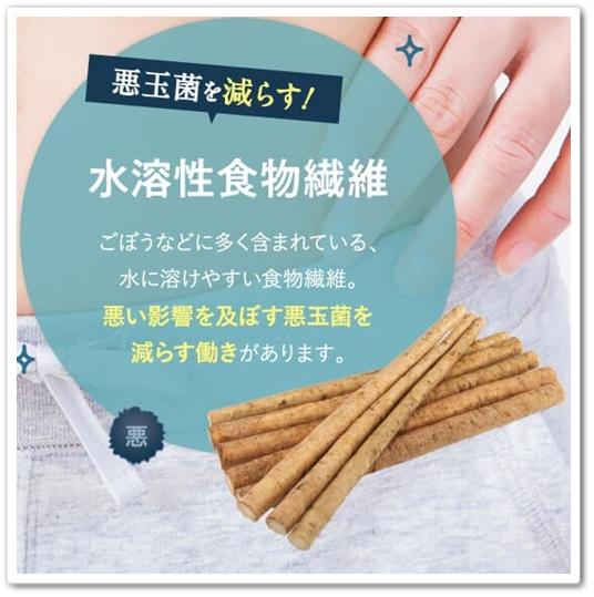 bisera ビセラ 口コミ 効果 乳酸菌サプリ 腸内フローラ 水溶性食物繊維