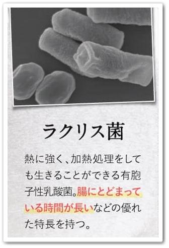 bisera ビセラ 口コミ 効果 乳酸菌サプリ 腸内フローラ ラクリス菌