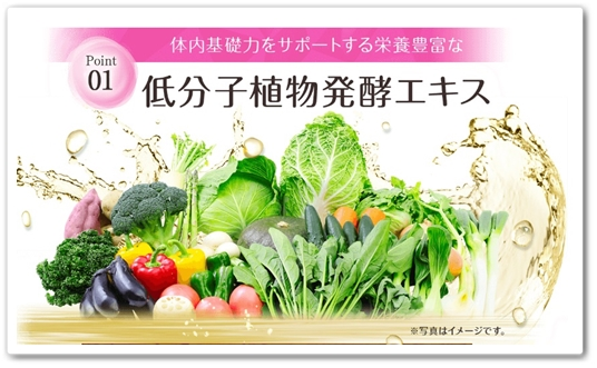 KOWA コーワ 植物発酵ジュレ 口コミ 40代 効果 低分子植物発酵エキス