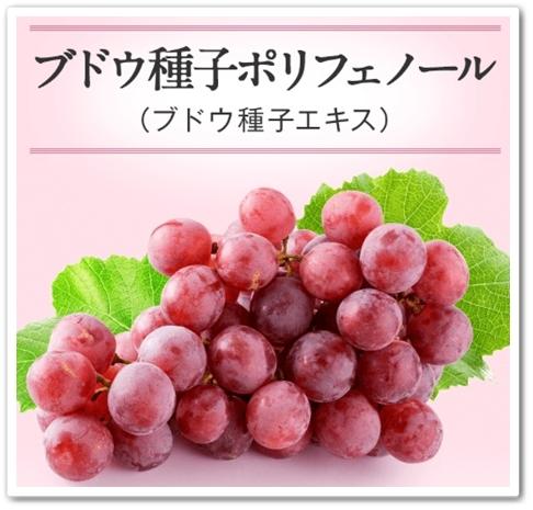 HALKA はるか 化粧品 口コ ゆらぎ肌ケア スキンケア ハルカ 40代 効果 ブログ ブドウ種子ポリフェノール