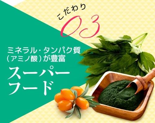 ケトジェンヌ 口コミ ケトン体 ダイエットサプリメント けとじぇんぬ 効果 成分 スーパーフード