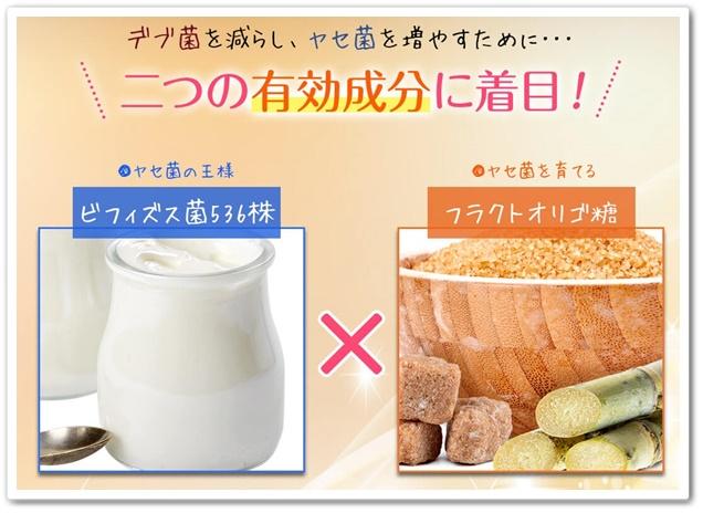 エルフィング 口コミ 効果は?デブ菌 痩せ菌 ダイエットサプリメント えるふぃんぐ 通販 最安値 成分2