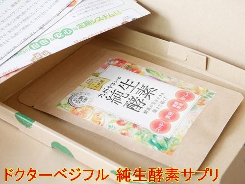 ドクターベジフル 純生酵素サプリ 口コミ 効果 九州野菜の生酵素サプリでスッキリ美ボディサポートサプリメント 40代 感想 評価 評判 ブログ 箱4