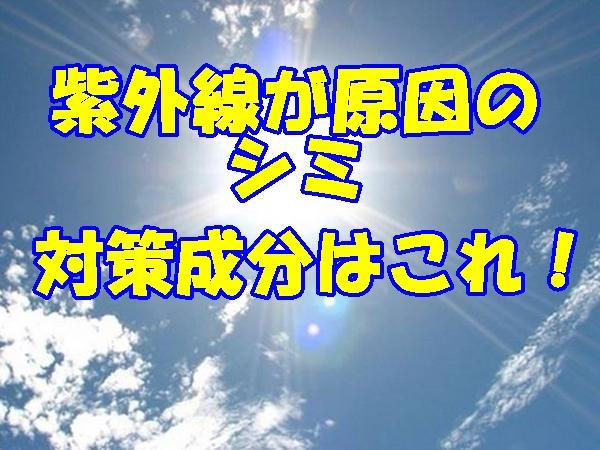 日焼け止め 夏の日差し 成分