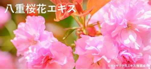 草花木果 多機能ジェルクリーム 口コミ そうかもっか オールインワンゲル たきのうじぇるくりーむ 効果 ブログ 八重桜エキス